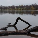 Foto de Wollaton Hall and Park