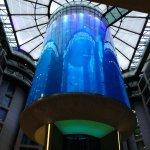 Radisson Blu Hotel, Berlin Foto