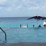 Photo of Coral Princess Golf & Dive Resort