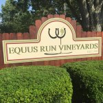 Welcome to Equus Run Vineyards!