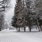 The local park oposite the hotel (bus stop for ski bus)