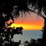 The Beachcomber Foto