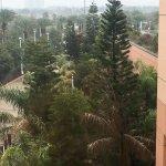 Moody Gardens Hotel Spa & Convention Center Foto