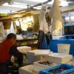 packing seafood