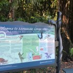 Mossman Gorge Information Board