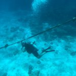 First Diving tour