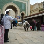 Bab Boujloud Photo
