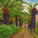 Foto de Madeira Botanical Garden