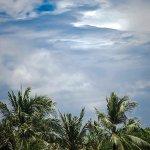 Foto de The Royal Beach Seminyak Bali - MGallery Collection