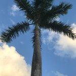 Photo de Luxury Bahia Principe Esmeralda