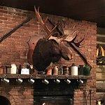 Moose 👍🏼👍🏼