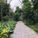 Photo of Folded Brocade Hill (Diecai Hill)