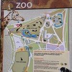 Parc de la Tête d'or (Park des Goldenen Kopfes) Foto