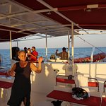 Photo of Ocean Diva Catamaran Sailing Cruises