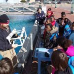Learning about ROVs in the front pond