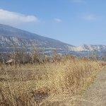 Reserve Naturelle du Bout du Lac ภาพถ่าย
