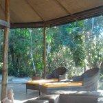 Photo of Amazon Ecopark Jungle Lodge