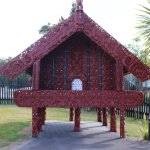 The Maori cultural show and Haka performance will be enjoyed on this tour