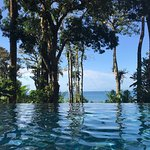 Barefoot paradise - with unbelievable service to match