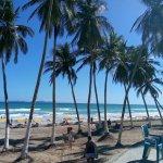 sector propio de playa cuidado y atendido