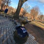 Photo of Boston Public Garden
