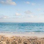Photo of NH Punta Cana