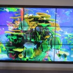 Members lounge TV screen
