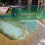 Dirty swimming pool