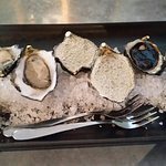 Oysters_large.jpg