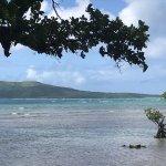 Bild från Native Round Island Tour