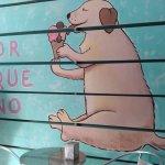 Photo of Porque No