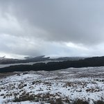 Photo of Gray Line Scotland
