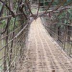 bamboo bridge leading to the waterfall