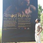 A poster of the Homo naledi