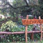 La Mesa Eco Park Foto