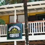Above Grounds Coffee House veranda overlooking main street Placencia, direct source organic coff