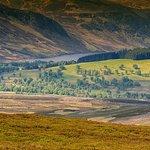 Beautiful Glenesk - Photographer Michael Huggan