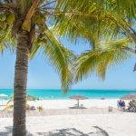 View Coco Beach Bar & Grille