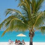 Coco Beach View