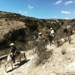 Taking the dusty trail into the ravine...