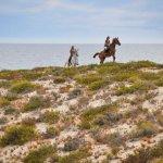 Cavalos na Areia照片