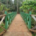 Nature Park Walk Foto