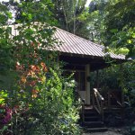Foto van Ian Anderson's Caves Branch Jungle Lodge