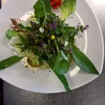 Gartensalat mit Vinaigrette