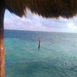 Photo de Ocean Coral & Turquesa