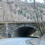 360 degree tunnel