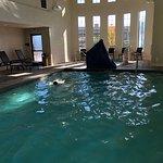 Photo de Hampton Inn & Suites- San Luis Obispo