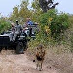 Photo of Tydon Safari Camp