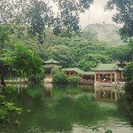 Foto de Qifeng Park