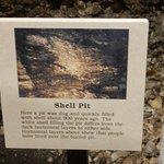 inside native shell mound
